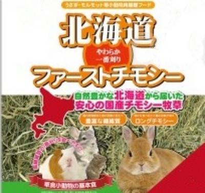 ウサギ草.jpg